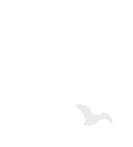 Pánská fleece bunda/mikina Horizon s krátkým zipem ADLER CZECH černá 2XL